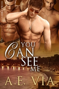 youcanseeme2 FinalCover 12-5