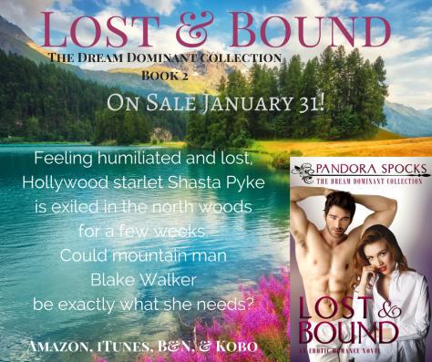 lost-bound-pre-sale-promo-4
