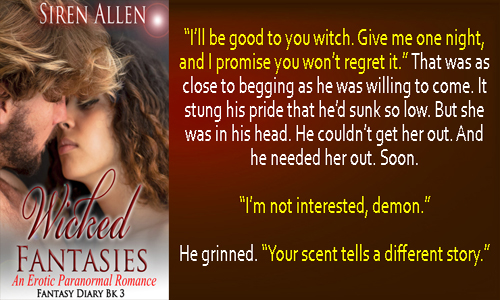 #NewRelease and #Naughty Excerpt from Wicked Fantasies by Siren Allen.