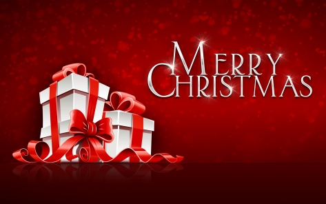 2014_merry_christmas-wide